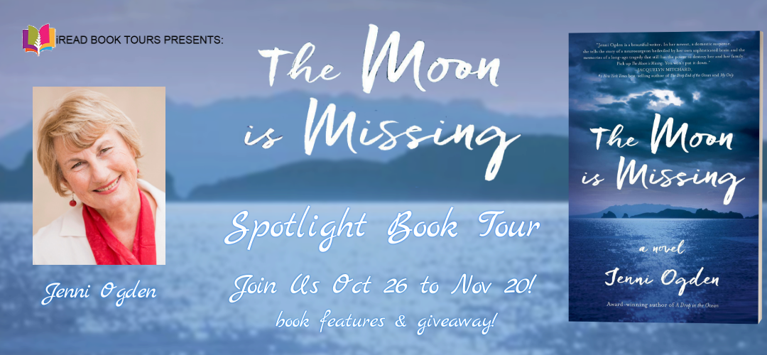 THE MOON IS MISSING by Jenni Ogden